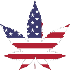 us flag with marijuana leaf